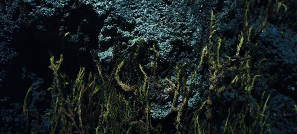 Olafur Arnalds New Grass